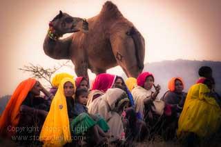 photography tour pushkar camel fair photography tour rajasthan